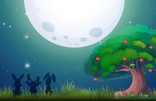 Cena da natureza na noite fullmoon Vetor grátis