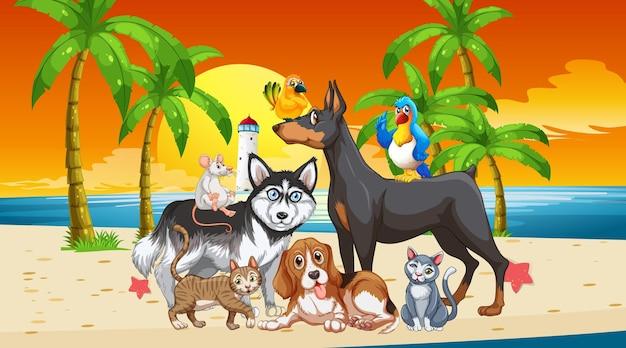 Cena da praia ao ar livre no pôr do sol com um grupo de animais Vetor grátis