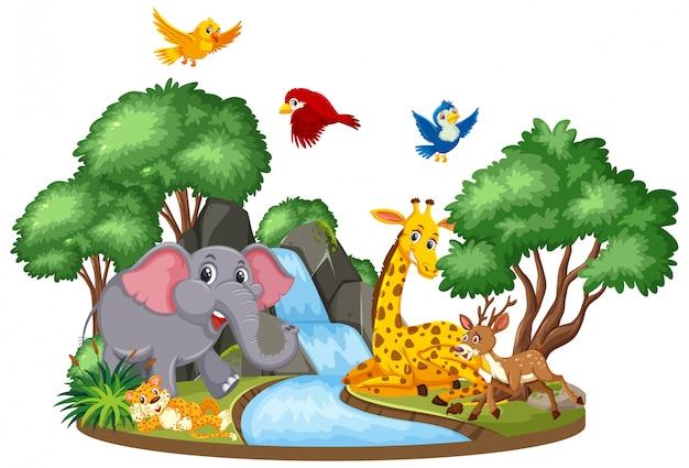 Cena de animais selvagens na cachoeira Vetor Premium
