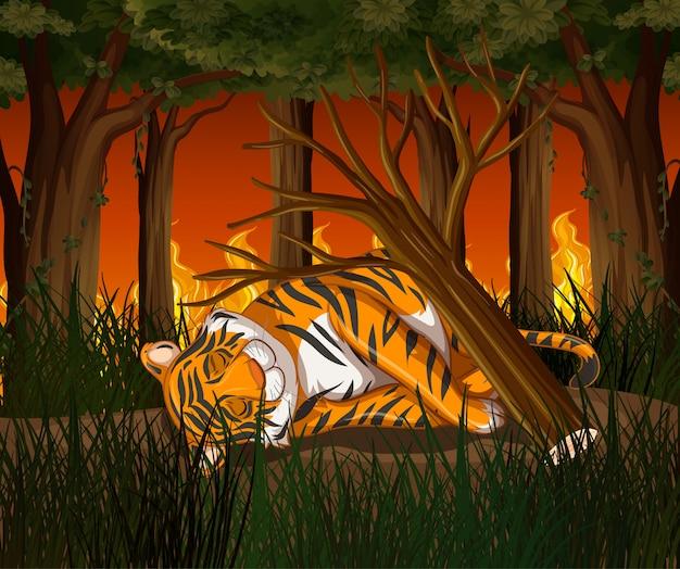 Cena de desmatamento com tigre e incêndio Vetor grátis
