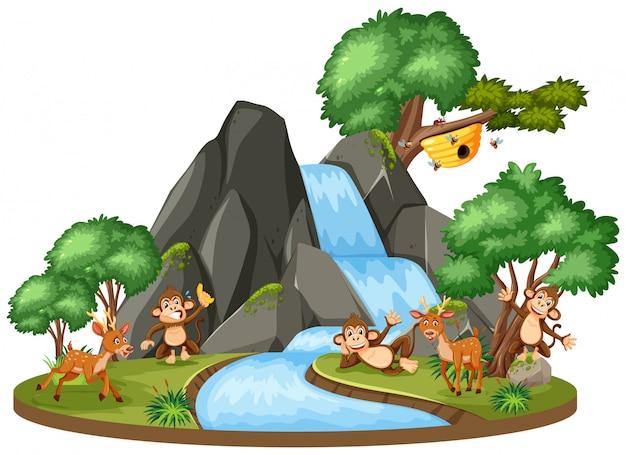 Cena de fundo de animais pela cachoeira Vetor Premium