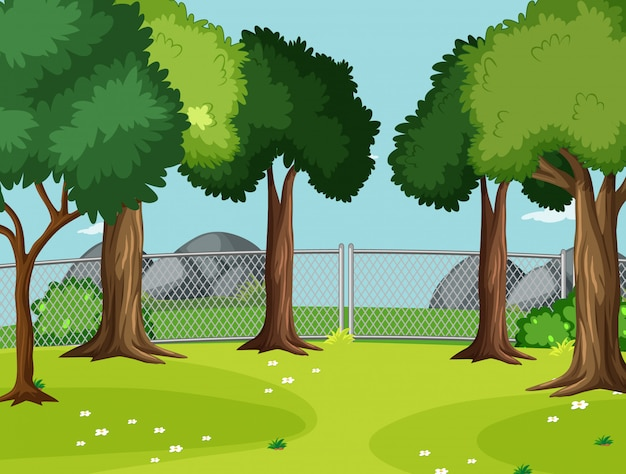 Cena vazia no parque com grandes árvores Vetor grátis