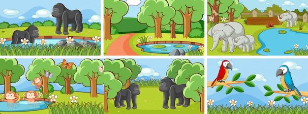 Cenas de animais na ilustração selvagem Vetor grátis