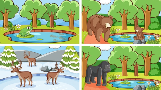 Cenas de fundo de animais em estado selvagem Vetor grátis