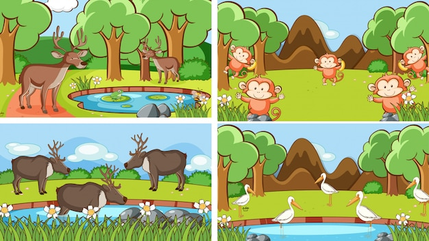 Cenas de ilustração de animais em estado selvagem Vetor grátis