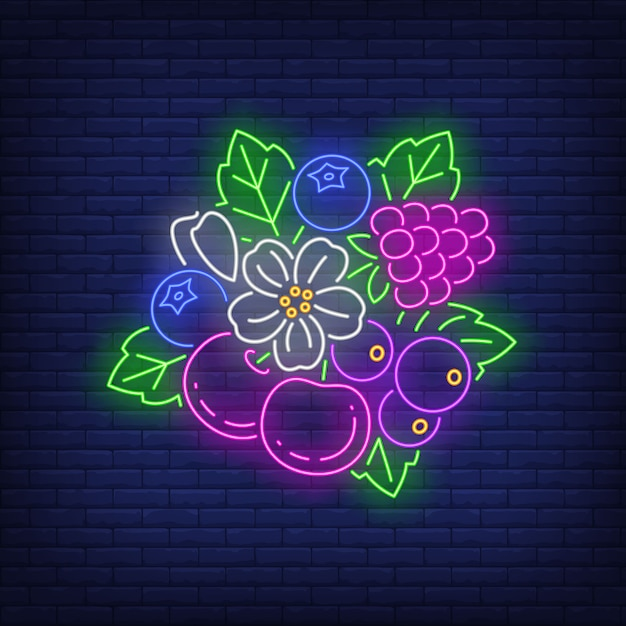 Cerejas, framboesa, mirtilos, flor e deixa o sinal de néon. Vetor grátis