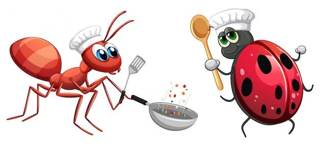 Chef de inseto cozinhar alimentos Vetor grátis