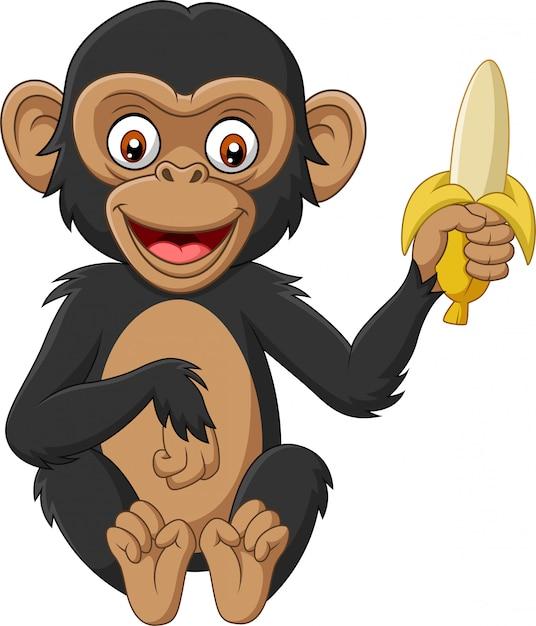 Chimpanzé de bebê dos desenhos animados segurando uma banana Vetor Premium