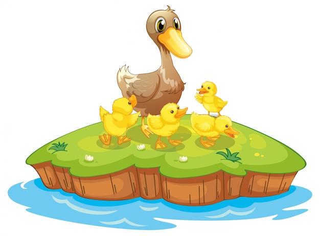 Cinco patos em uma ilha Vetor Premium
