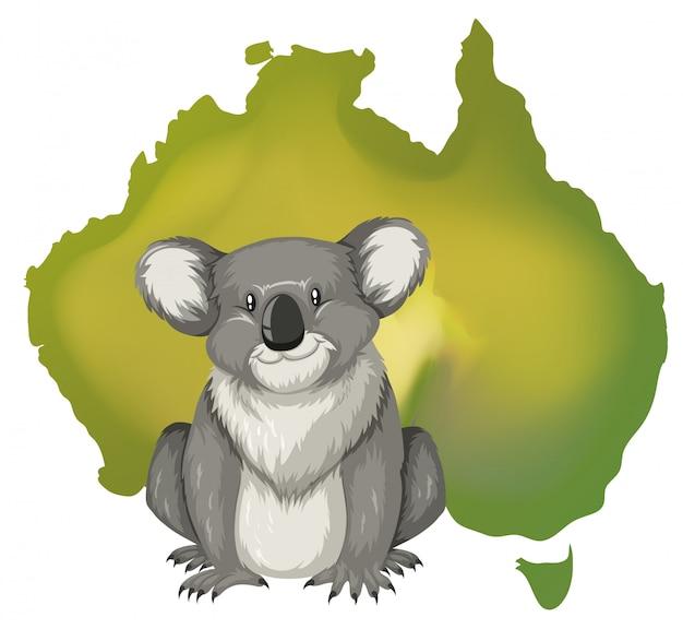 Coala e mapa australiano Vetor Premium