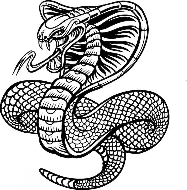 Cobra, cobra, vetorial, ilustração Vetor Premium