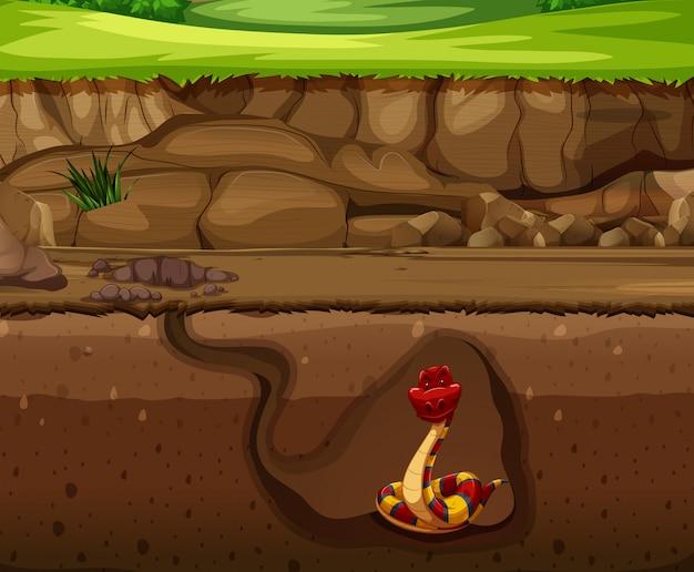 Cobra, subterrâneo, caverna Vetor grátis