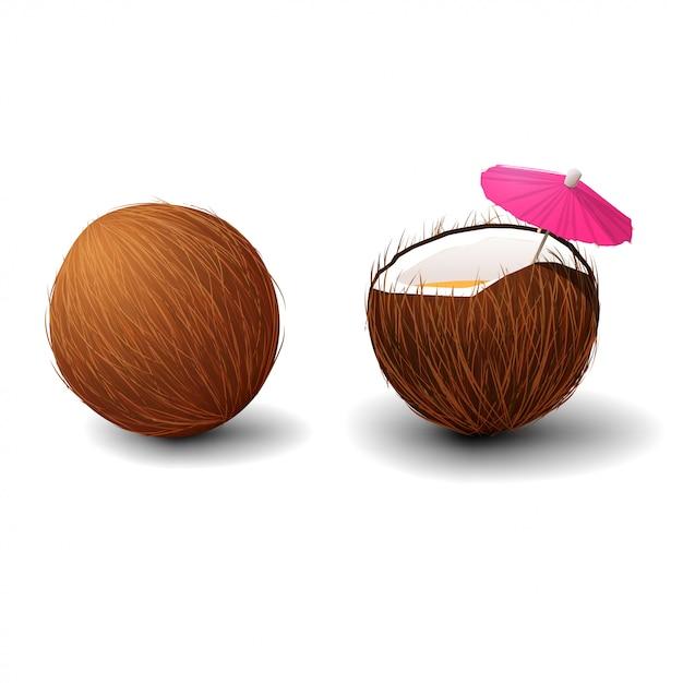Coco isolado no fundo branco Vetor Premium