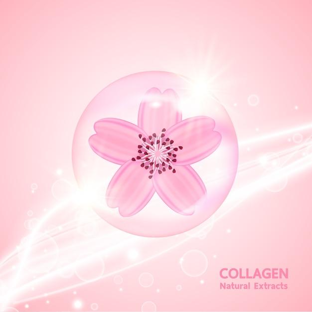 Colágeno e soro sakura para produto de beleza. Vetor Premium