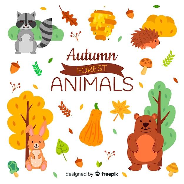 Coleção de animais de floresta de outono de mão desenhada Vetor grátis