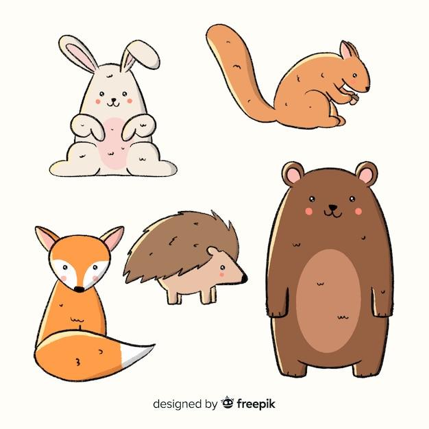 Coleção de animais de floresta outono mão desenhada Vetor grátis