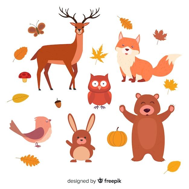 Coleção de animais de floresta plana outono Vetor grátis