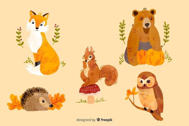 Coleção de animais de outono em aquarela Vetor grátis