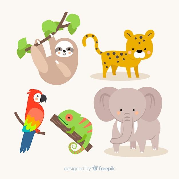 Coleção de animais tropicais design plano Vetor grátis