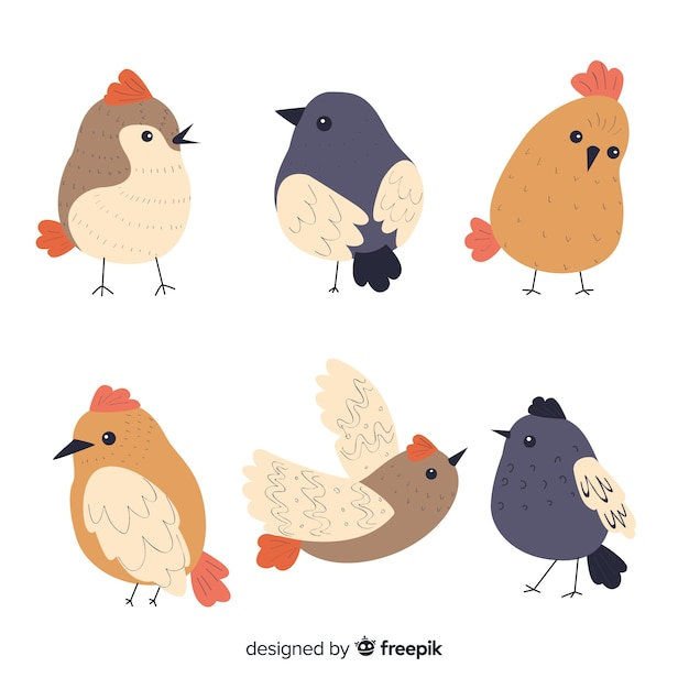 Coleção de aves na mão desenhada estilo Vetor grátis