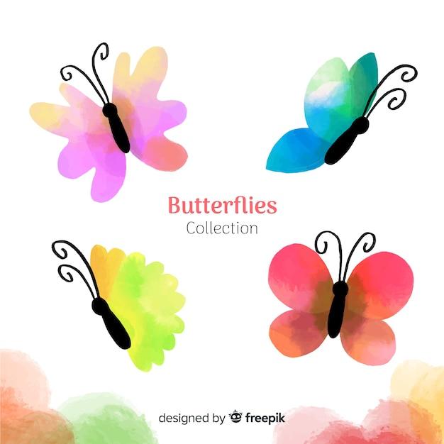 Coleção de borboletas coloridas Vetor grátis