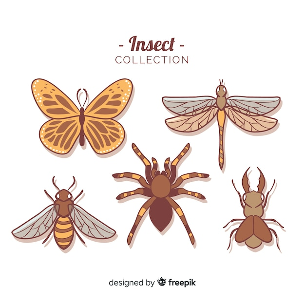 Coleção de bug colorido mão desenhada Vetor grátis