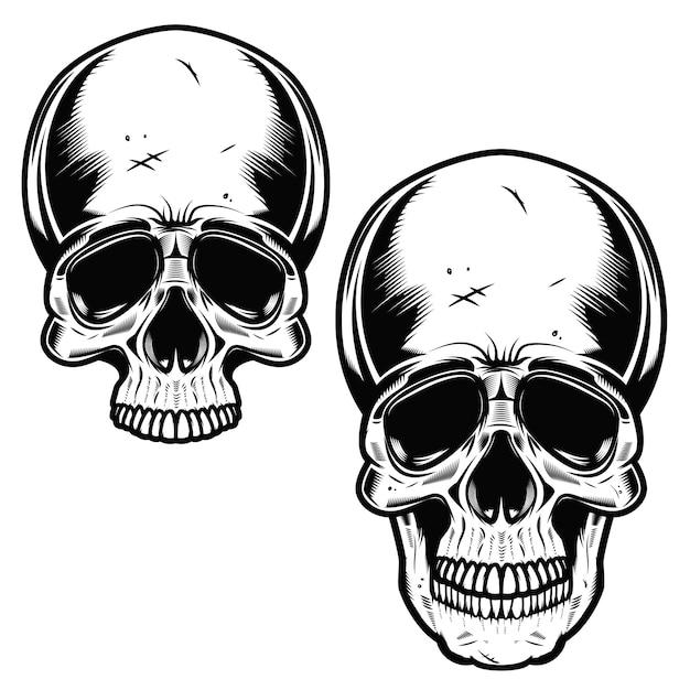 Coleção de crânios desenhados mão em monocromático. ilustrações de caveiras Vetor Premium