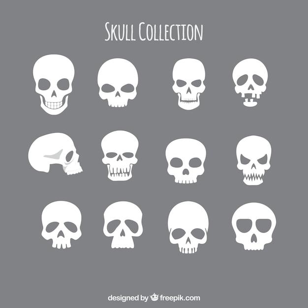 Coleção de crânios Vetor grátis