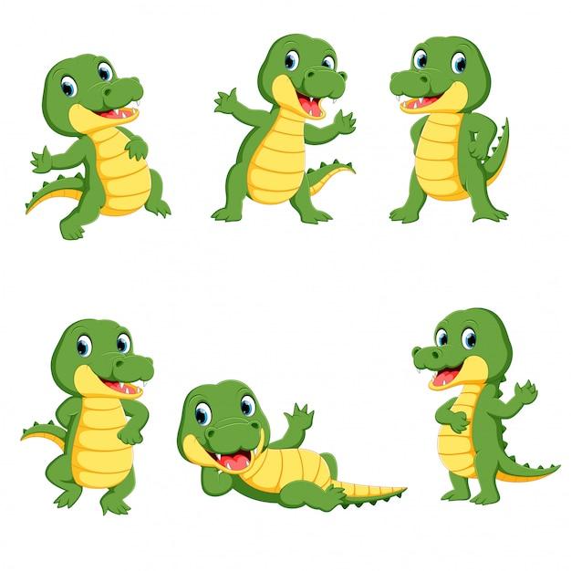 Coleção de desenho de personagem de crocodilo bonito Vetor Premium