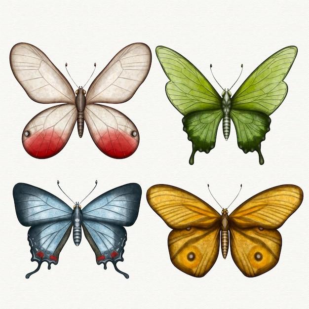 Coleção de diferentes borboletas em aquarela Vetor grátis