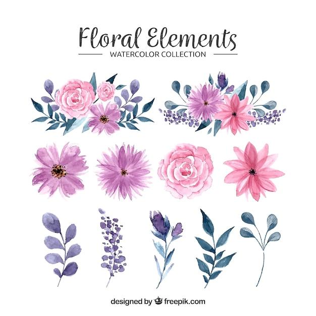 Coleção de elementos florais em aquarela Vetor Premium