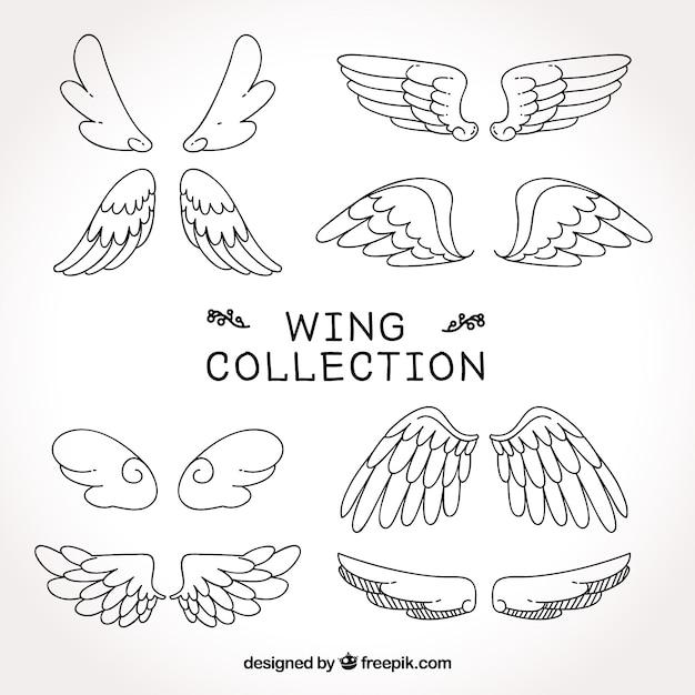 Coleção de esboços de asas Vetor grátis