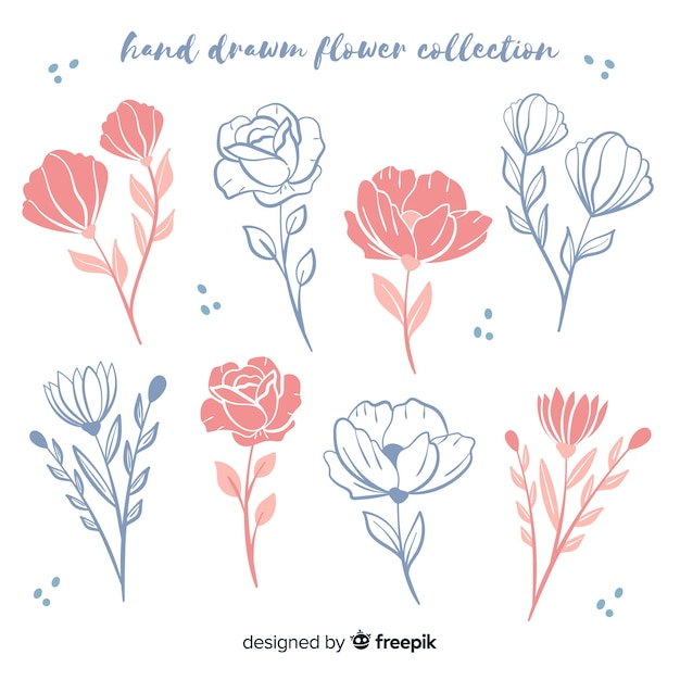 Coleção de esboços florais desenhados à mão Vetor grátis