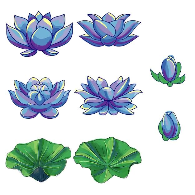 Coleção de flores de lótus Vetor grátis
