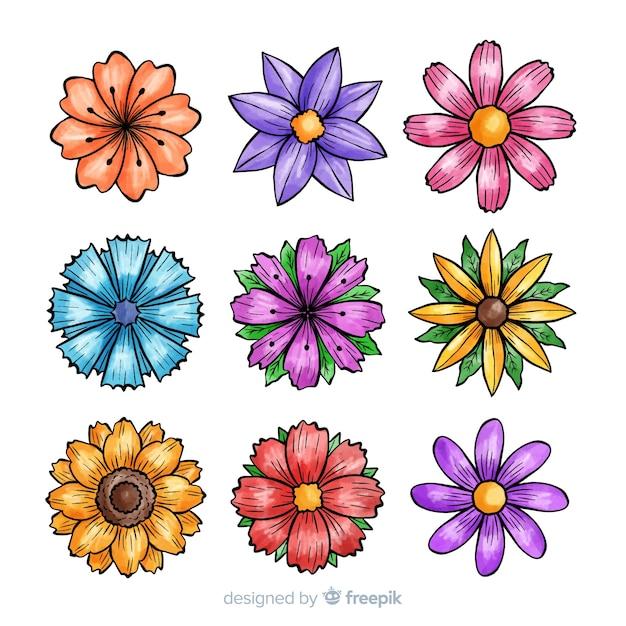 Coleção de flores de primavera Vetor Premium