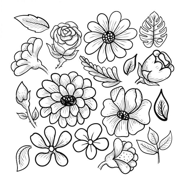 Coleção de flores e folhas Vetor Premium
