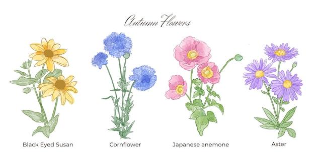 Coleção de flores em aquarela outono Vetor grátis