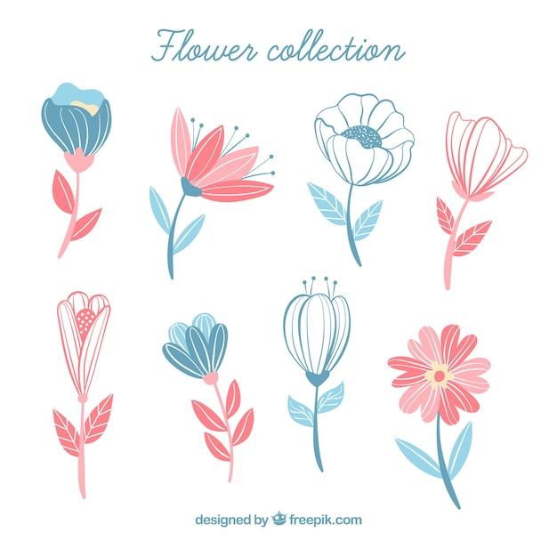 Coleção de flores em estilo desenhado a mão Vetor grátis