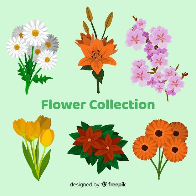 Coleção de flores Vetor grátis