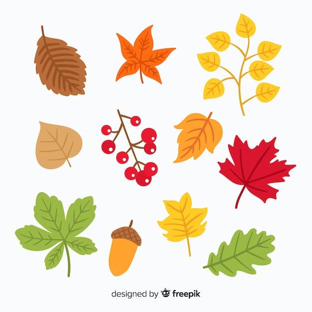 Coleção de folhas de outono desenhada de mão Vetor grátis