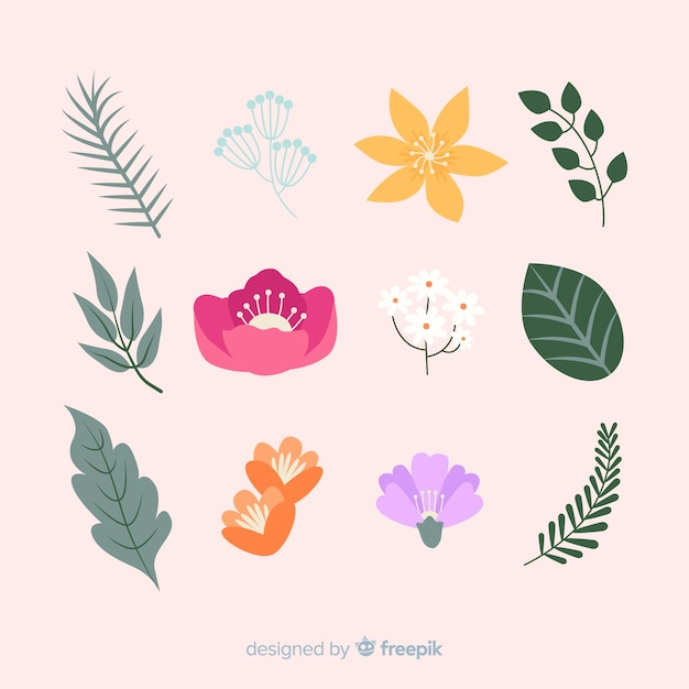 Coleção de folhas e flores Vetor grátis