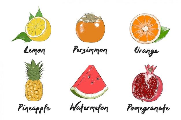 Coleção de frutas orgânicas de estilo gravado vector Vetor Premium