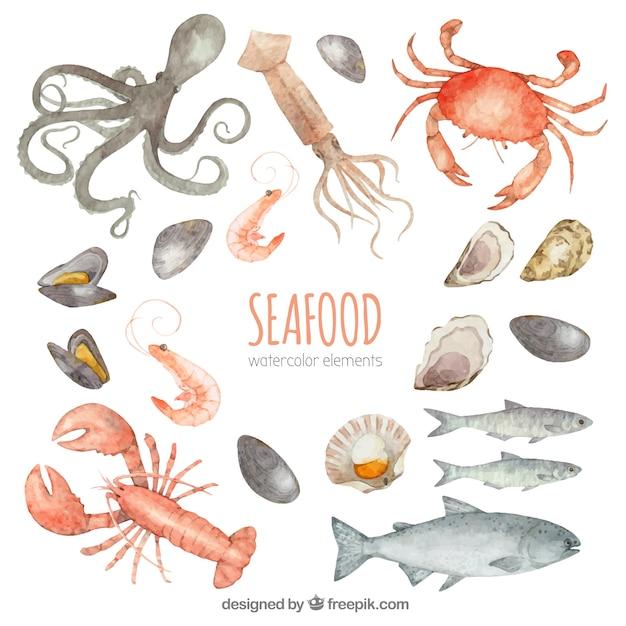 Coleção de frutos do mar em aquarela Vetor grátis