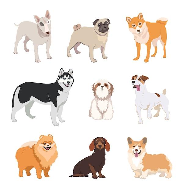 Coleção de ícone plana de raças de cães dos desenhos animados Vetor grátis