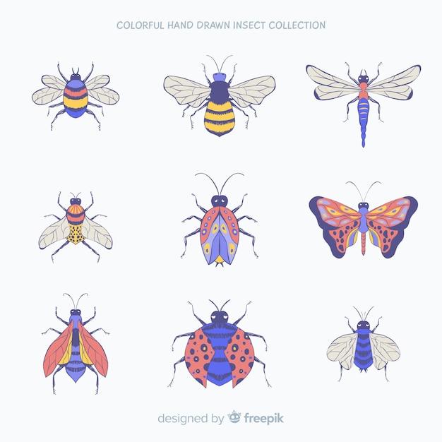 Coleção de insetos de mão desenhada Vetor grátis