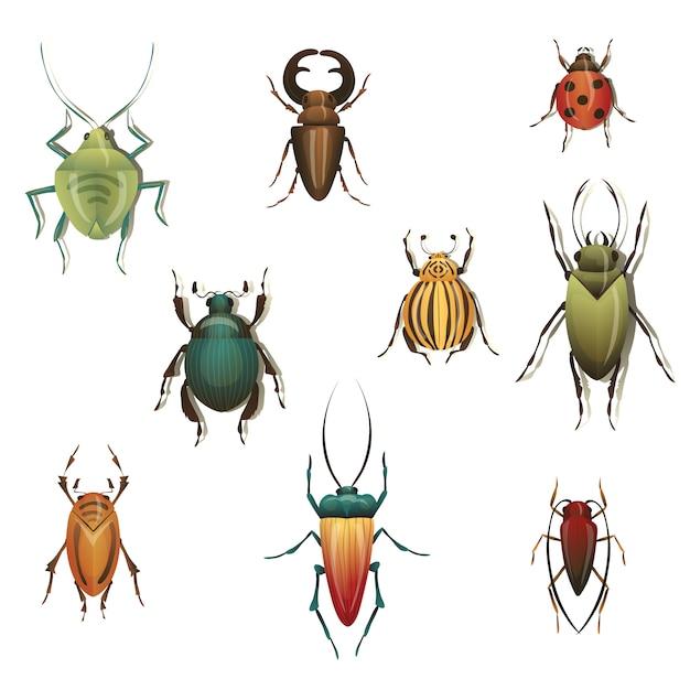 Coleção de insetos de variedade em fundo branco. Vetor Premium
