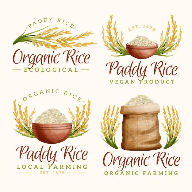 Coleção de logotipo da rice Vetor grátis