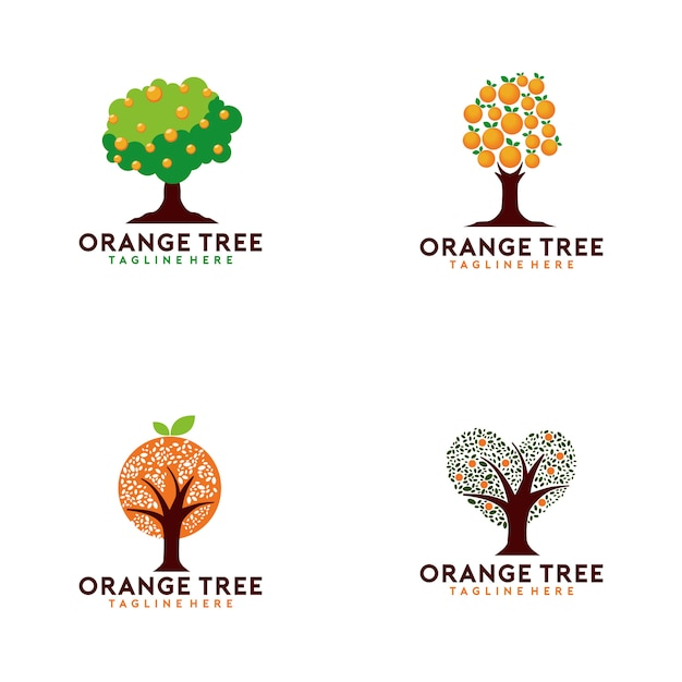 Coleção de logotipo de laranjeira Vetor Premium