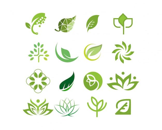 Coleção de logotipo folha e árvore vector Vetor Premium