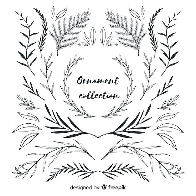 Coleção de ornamento de folhas estilo desenhado à mão Vetor grátis